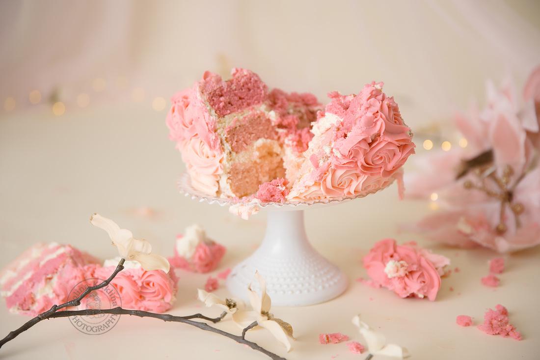 Smashed Cake at the studio photo session